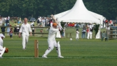Chantilly Cricket Ground 1st Anniversary